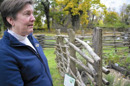 Justine Schaeffer, director of the Benjamin Banneker Historical Park and Museum, is shown looking at a garden next to a replica of Banneker's cabin on the grounds of the park in Oella. The Baltimore County facility celebrates Banneker's 283rd birthday on Saturday, Nov. 8.