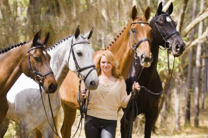 Marilyn Little with horses Black Pearl, Smoke on the Water, Demeter and Azarah.