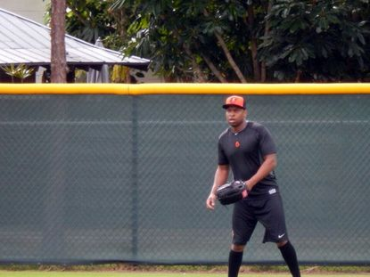 Outfielder Delmon Young, who signed with the Orioles recently, practices during the team's minicamp in Sarasota, Fla.