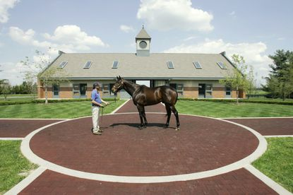 Street Sense, shown in 2008, is held by Joe Mitchell at Jonabell Farm in Lexington, Ky. Some of the best-known farms in Kentucky's scenic horse country are borrowing from another of the state's contributions to the good life - Kentucky's bourbon whiskey distilleries - in an effort to win new recruits to an aging and shrinking fan base. Taking cues from the overwhelming success of the Kentucky Bourbon Trail, they hope to develop a thoroughbred trail with a more coordinated outreach to fans.
