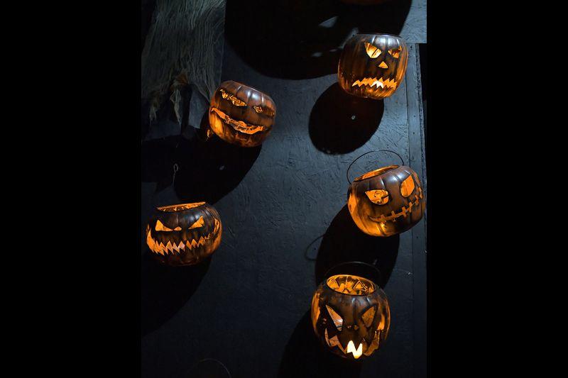 Halloween 2020 In Carroll County Mcdaniel College Hackney Haunts gets ready to open   Carroll County Times