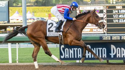 Bellafina's future looks more promising with a win in the Santa Ynez Stakes