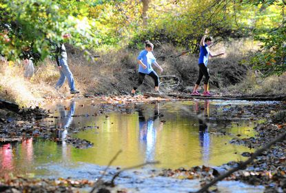 Folks make their way through a wooded area along the uncompleted two miles of the Ma & Pa Trail north of Bel Air Sunday. The walk was held to raise awareness and support for the new section.
