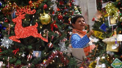The annual Festival of Trees is set for Friday through next Sunday at the Maryland State Fairgrounds in Timonium.