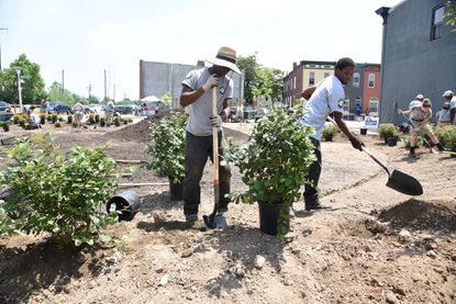 Baltimore, Md--6/12/15--Left to right, Lovelle Johnson, Jr., 19, McElderry Park, and Davon Davis, 26, E Baltimore, both members of the AmeriCorps community lot team, work to plant shrubs in a vacant lot in the 2300 block of E. Eager Street. They creating a garden in support of Mayor Stephanie Rawlings-Blake's Growing Green Initiative (GGi). Kim Hairston/The Baltimore Sun--#207