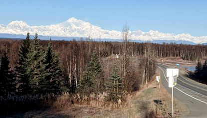 Denali, the highest mountain in North America appears on the horizon as one approaches Talkeetna, in the interior of Alaska the 'Last Frontier,' where a cat has reigned as the elected mayor of the town since 1998.