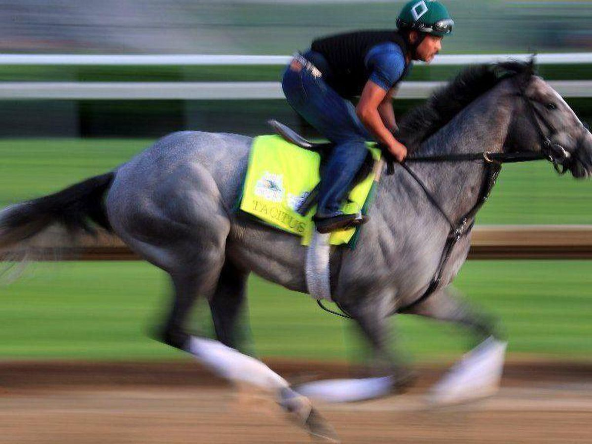 How to bet the 2019 Belmont Stakes: Liam Durbin handicaps the final