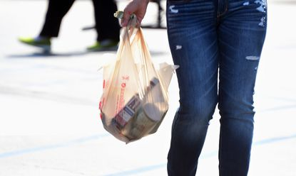 Fees on plastic shopping bags have become increasingly popular way to reduce their use - and conserve fossil fuels - across the country.