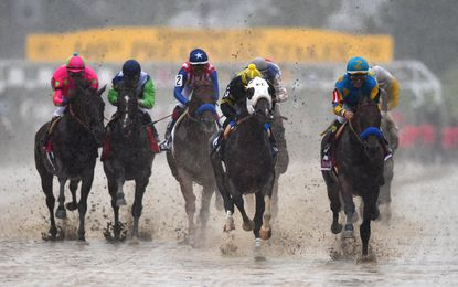 Mr. Z and American Pharoah lead the horses into the first turn of the 140th Preakness Stakes at Pimlico Race Course.Rain poured as the race began.