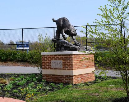 Former Bel Air High coach honored with Bobcat sculpture