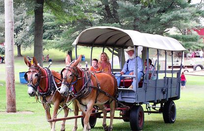 Jim Saylor and his wagon team will give rides throughout the day at the Carroll County Farm Museum during the annual Old-Fashioned Fourth of July Celebration on July 4.