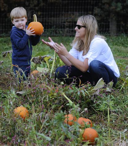 For Md. pumpkin farms, the rush is on