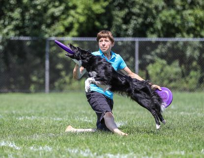 Linda Kriete throws to her dog Dax at the Mid-Atlantic Disc Dogs' 7th Inning Fetch Discdogathon World Qualifier on Aug. 20 in Poolesville.