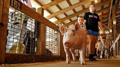 The 73rd annual Howard County Fair in West Friendship kicks off this Saturday.