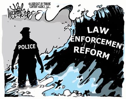 Wave of Reform