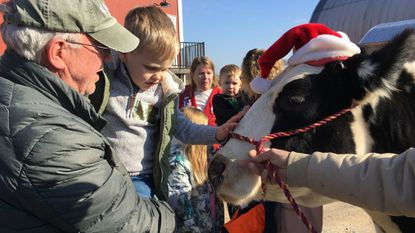 """Kyle Murphy, 4, held by his grandfather, Bob Fitzpatrick, pets Emma, a 15-year-old dairy cow during a """"Breakfast with Santa"""" event Sunday at Falling Branch Brewery in Harford County."""
