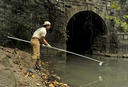 David Flores of Blue Water Baltimore samples water in Gwynns Run in Carroll Park.
