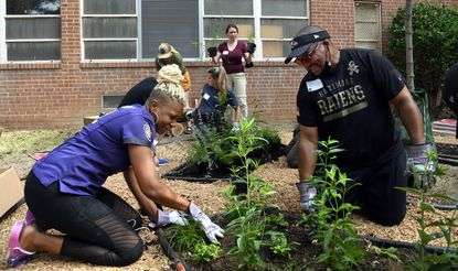 Chante Lewis, left, a teacher at Edgecombe Circle ES, works with Ravens director of security Craig Singletary, right, planting in the school's new Zen garden. Ravens staff members and executives volunteered today along with Heart Of America at Edgecombe Circle Elementary School in northwest Baltimore. 60 volunteers planted trees, helped build an outdoor classroom, worked on a zen garden and other restoration efforts. An additional 40 Ravens volunteers worked at Curtis Bay Elementary School.