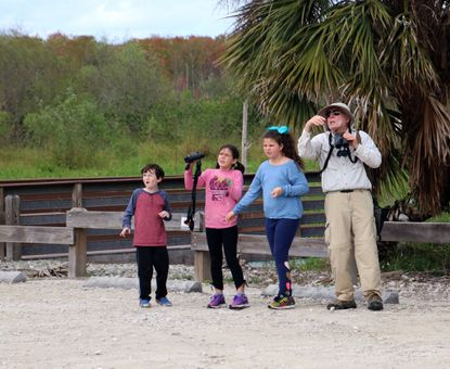Gerald Winegrad and his grandchildren tour the Bird Rookery Swamp in Immokalee, Florida while schools in that state are on hiatus because of the coronavirus pandemic.They saw 20 alligators, lizards, a few snakes, Red-shouldered Hawks, magnificent Swallow-tailed Kites, many herons and egrets.