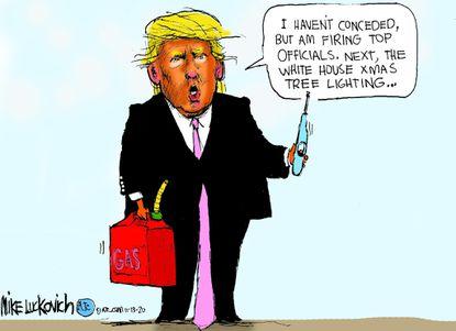 Trump Concede