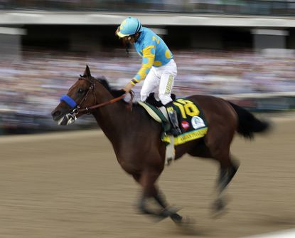 Derby champ American Pharoah may get California competition at Preakness