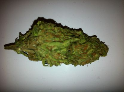 The High Life: A weed review of Kosher Kush