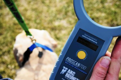 The Harford County Sheriff's Office animal control division demonstrates one of its new microchip scanners on Kilo, a therapy dog at Child Advocacy Center.