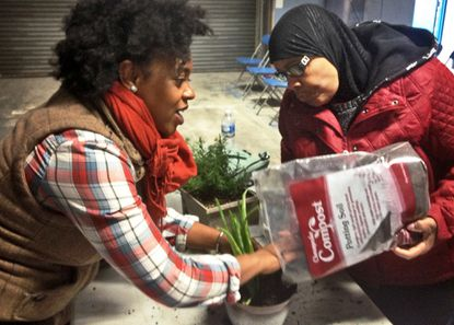 Jennifer Lumpkin, a gardener with Creative Community Builders, LLC, a private company based in Silver Spring, leads a free seminar on plant propagation - that is, starting new plants from old clippings - as part of the Neighborhood Grow Center, a series of green-education programs the city is offering every weekend this month at the Baltimore Community Tool Center. Lauren Muhammad, an amateur gardener and urban farmer in Gwynn Oak, helps Lumpkin transfer plant clippings to new soil.
