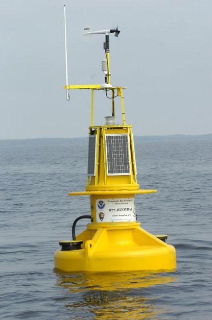 Bay 'smart' buoys scuttled by Obama