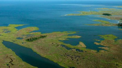 Proposed rollback of watershed protections would impact the Chesapeake Bay, conservationists say