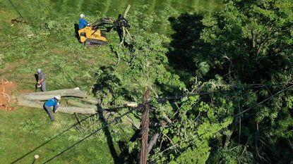 A crew with J&B Tree Service cuts up a tree entangled in power lines along Linthicum Road in Dayton on Friday, a day after a tornado moved through the area.