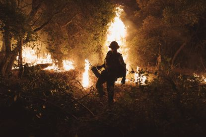 Firefighters light backfires at the Bobcat Fire at Santa Anita Canyon in Arcadia, California Sunday, Sept., 13. Wildfires across the West Coast have consumed roughly five million acres of land in California and Oregon and destroyed entire towns in Washington, and they continued to spread on Sunday.