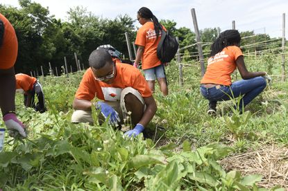 Jamario Cantrell, 18, of Florida, was among a group of young people from the Urban League of Palm Beach County visiting Civic Works Real Food Farm for a day of service. They are in Baltimore for the National Urban League's 27th annual Youth Leadership Summit convention.