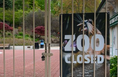 The Maryland Zoo is closed during the coronavirus pandemic but behind the scenes a team of keepers are making sure the animals are cared for. There is much debate about when businesses and attractions should be allowed to reopen.
