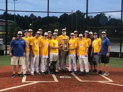The Westminster Vipers under-16 baseball team is competing for a Mid-Atlantic Baseball Association championship.