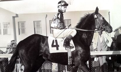 Art Sherman, now the trainer for California Chrome, is pictured aboard Tinkalero in 1959.