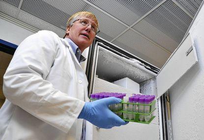 Dr. Douglas A. Granger, Johns Hopkins professor of Nursing, Public Health and Medicine, stores saliva samples.