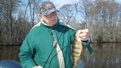 I took this yellow perch on a jig.