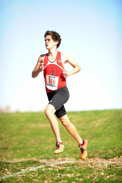 Dulaney junior Eric Walz broke 16 minutes and captured second in the Class 4A state cross country meet for the Lion boys who also finished second.