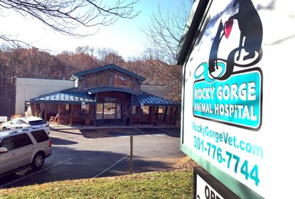 Veterinary staff at the Rocky Gorge Animal Hospital in Laurel came forward to prosecutors almost a year after the Capital Gazette shooting to tell them thy believed the gunman behaved oddly when he took his starving cat in to be euthanized before the deadly attack.