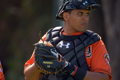 Baltimore Orioles catcher Francisco Pena at the first day of workouts for position players as well as pitchers and catchers on the field during spring training at the Ed Smith Stadium complex.