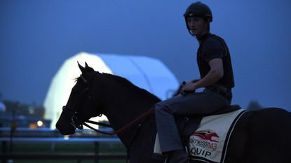 Preakness entrant Quip, pictured on the track at Pimlico Race Course on Thursday morning, is trained by Rodolphe Brisset, 34, whose wife, Brooke Baker, grew up in Rising Sun in Cecil County.