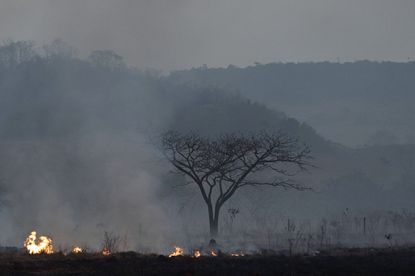 Brazilian troops deploy in the Amazon to fight fires that have swept the region