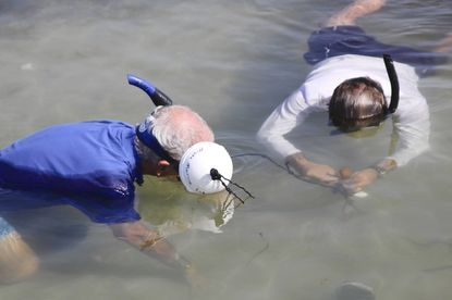 Erik Rifkin (left) and an unidentified Mote Marine Laboratory researcher look for toxins in Sarasota Bay.