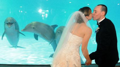 Caroline Trowbridge and Devon Minarik of Hunt Valley kiss in January 2011 at the National Aquarium in front of the dolphin exhibit.