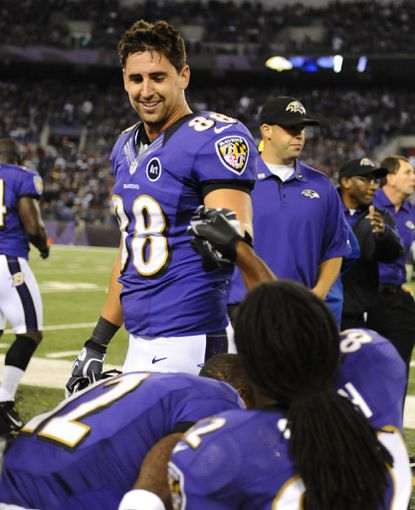 Dennis Pitta is congratulated after a second-quarter touchdown reception against the Patriots.