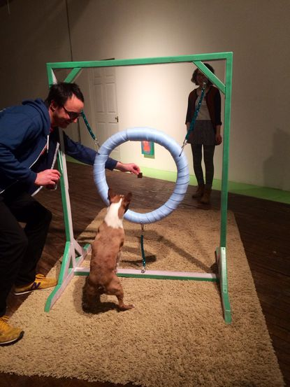 'Pooches at the Penthouse' offers an art exhibit both dogs and their owners can enjoy