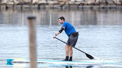 A paddleboarder cruises on Annapolis harbor as higher temperatures warm the area in January.