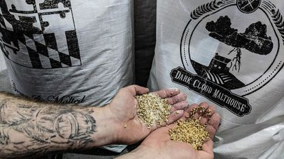 The Guinness brewery in Halethorpe has released a limited edition beer made with hops and malt from Maryland.