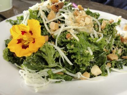 Kale salad at Common Grounds Café in Kilauea. Photo by Diana Love for The Capital